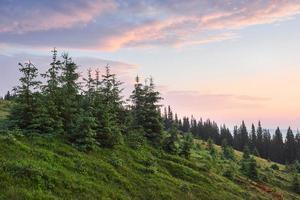 voyages, randonnées. paysage d'été - montagnes, herbe verte, arbres et ciel bleu photo