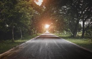 route vers le soleil et les arbres sombres. photo