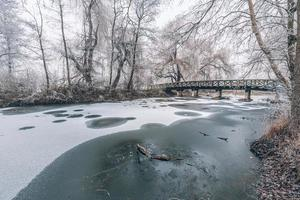 scène d'hiver au jardin botanique, montrant un pont au-dessus de l'eau gelée et des arbres couverts de neige fraîche photo
