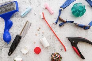 outils de soins pour chiens brosses, pilules, coupe-ongles, laisse, médicament, tampon de toilette, collations et jouets éparpillés sur fond blanc vue de dessus photo