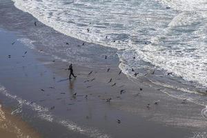 vue aérienne sur les personnes et les oiseaux de mer dans l'océan pacifique. photo