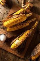 épi de maïs grillé