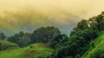 brume matinale de la province de nan photo