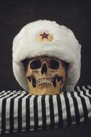 crâne avec uschanka russe blanc photo