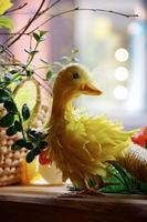 canard de Pâques jaune. à l'intérieur