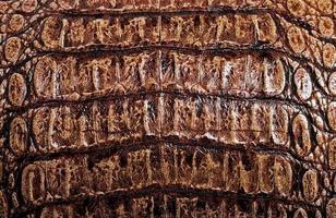 fond à motifs d'alligator brun photo