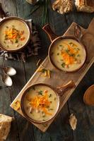 soupe au fromage à la bière maison photo