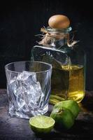 tequila et limes photo