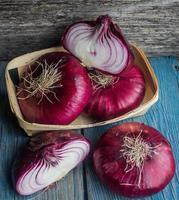 oignon violet photo