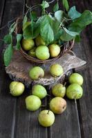 poires mûres sur table en bois photo