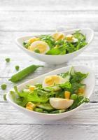 salade de légumes à la roquette, au concombre et aux œufs
