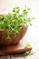 herbe de thym frais dans un bol en bois photo
