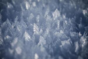 modèles d'hiver # 1
