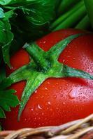 tomate fraîche photo