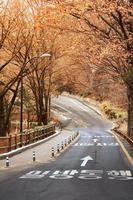 tour de Séoul photo