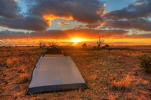 plaine de nullarbor, australie photo