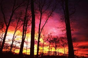 coucher de soleil floride photo