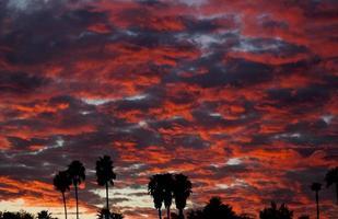 coucher de soleil magenta californie photo
