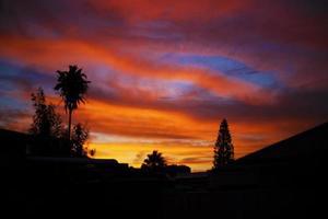 coucher de soleil dans la cour arrière