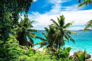 plage tropicale photo