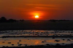 coucher de soleil au point d'eau à nxai pan np photo