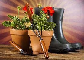 arrosoir et gants de jardinage photo