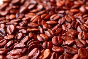 grains de café photo