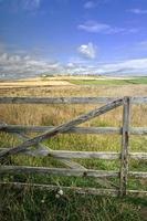 portes et déposé et le lézard à Cornwall photo