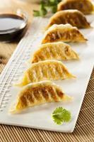 potstickers végétariens asiatiques faits maison photo