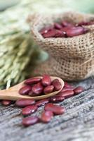 haricots rouges sur une cuillère en bois photo
