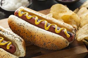 Gourmet grillé tous les chiens de boeuf chauds