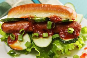 hot-dog avec ketchup et concombres closeup