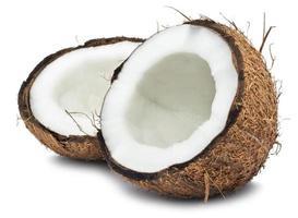 noix de coco photo