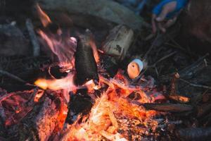 cuisine au feu de camp photo