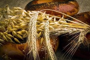 pain blanc frais photo