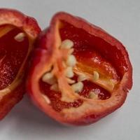 après la moitié du poivre rouge aji chili