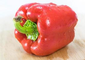 piment chili rouge photo