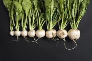 navets blancs biologiques, cultivés en ferme isolés sur fond noir photo
