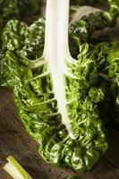 bettes vertes biologiques fraîches