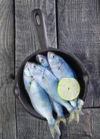 poisson cru photo