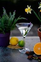 gin botanicals photo