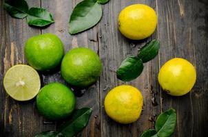 citron vert frais photo