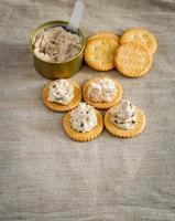 cracker avec tartinade de thon photo