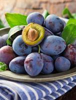 prunes bleues mûres fraîches sur l'arbre