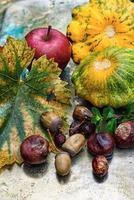 automne nature morte