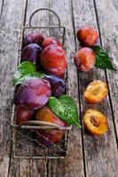 prune fraîche