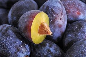 prunes humides photo