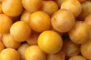 prunes jaunes photo