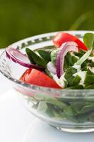 salade fraiche. photo