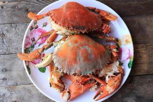 crabe de mer à vapeur photo